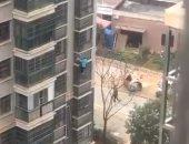 """""""قلبها ميت"""".. مسنة صينية حبسها ابنها فهربت بالنزول على واجهة المبنى.. فيديو"""