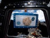 """أول """"كوكيز"""" مخبوزة فى الفضاء تعود للأرض للاختبار"""