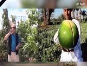 """نماذج ملهمة.. برامج زراعية على """"يوتيوب"""" تتحدى """"الترفيه"""" وتصل العالمية"""