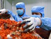 وزارة الصحة اللبنانية تؤكد رصد ثالث حالة إصابة بكورونا