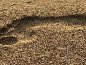 مفاجأة علمية.. أقدام البشر تطورت قبل 3.5 مليون سنة