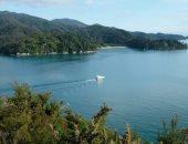 """صور.. """"أبيل تاسمان"""" أصغر محمية طبيعية فى نيوزيلندا.. شوف سحر الطبيعة"""
