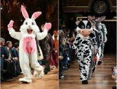 فيديو.. حيوانات فى عروض الأزياء العالمية بأسبوع الموضة فى باريس.. اعرف سر ظهورها