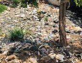 قارىء يشكو من انتشار القمامة والروائح الكريهة من مصرف سخا بكفر الشيخ