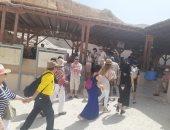 """""""الأقصر بلدنا بلد سياح"""".. انتعاشة سياحية بزيارات مقابر ملوك الفراعنة.. صور"""