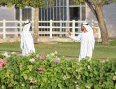 الإمارات تمدد إغلاق المساجد ودور العبادة حتى اشعار آخر