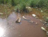 قارئ يشكو من غرق منزله بمياه الأمطار والصرف الصحى