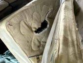 اعتقال مجرم اختبأ داخل مرتبة سرير ببريطانيا