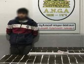 الداخلية تضبط 120 طربة حشيش بالإسماعيلية بقيمة 850 ألف جنيه