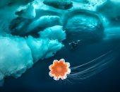لو دا جنان اتجنن.. غواصة تتحدى برودة جرينلاند وتغطس فى فوتوسيشن جرىء