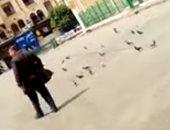 فيديو.. الحمام ينتشر بساحة مسجد الحسين بدلا من المصلين