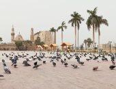 فيديو  .. لأول مرة رفع آذان الجمعة من ساحة أبو الحجاج الأقصرى ومنع الصلاة