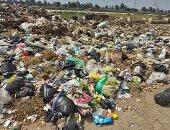 القمامة تحاصرنا.. شكوى أهالى قرية ميت أشنا بالدقهلية