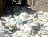 شكوى من انتشار القمامة والرائحة الكريهة بشارع جمال عبد الناصر بطنطا