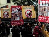 لأول مرة.. مدينة صينية تفرض غرامة مالية كبيرة على أكلى الحيوانات الأليفة