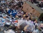 شكوى من انتشار القمامة بشارع مصطفى ركابى فى البراجيل بالجيزة