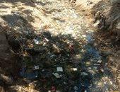 """""""سيبها علينا"""" شكوى من انتشار القمامة بترعة بنجع الشيخ بقنا"""
