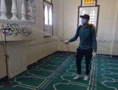 شباب قرية أبو السيد بالبحيرة يطهرون الشوارع ضد فيروس كورونا