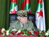 رئيس الأركان الجزائرى: الشعب سيقوم بملحمة فى الاستفتاء على التعديلات الدستورية