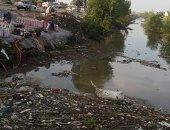 قارئ يشكو تراكم للقمامة والحيوانات النافقة بترعة بمدخل قرية بطرة بالقليوبية