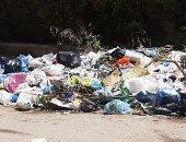 شكوى من انتشار القمامة بمنطقة النخيل فى حى العجمى بالإسكندرية