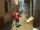 شباب قرية سلامون بالبحيرة يواجهون فيروس كورونا بتعقيم الشوارع والمنازل