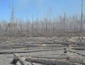 حرائق الغابات تقترب بشكل كبير من مفاعل تشيرنوبل النووى.. فيديو