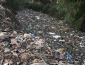 تغطية القمامة لطريق ترعة راضى بقرية كفر الفرعونية محافظة المنوفية