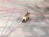 """كلب يثير دهشة المارة بمهارات المشى على """"سكوتر""""... فيديو"""