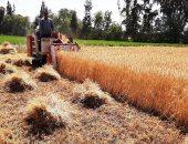كيف استهدفت خطة التنمية المستدامة تحقيق الاكتفاء الذاتى من المحاصيل الزراعية؟