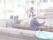 الزراعة: إقامة مراكز تجميع قريبة من الفلاحين لتسهيل توريد القمح