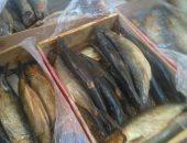 صور.. تموين مطروح ضبط أسماك رنجة وجُبن ولحوم غير صالحة للاستهلاك الآدمى