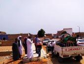 شباب مدينة دهب بجنوب سيناء يساندون الدولة بحملات تطوعية لمجابهة كورونا.. صور