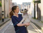 """مؤسسة أيرلندية تتيح خدمة """"الحضانة"""" لحيوانات العاملين فى الخدمات الصحية"""