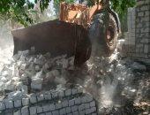 صور.. إزالة تعديات على الأراضى الزراعية وأملاك الدولة بالمنيا ودمياط