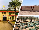 مستشار بأكاديمية ناصر: اهتمام الدولة بتنمية سيناء هدفه ربطها بباقى المحافظات