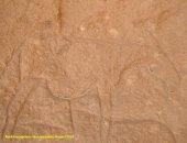 صحيفة إيطالية: كورونا لم يستطع وقف اكتشافات مصر للحياة الفرعونية