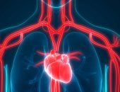 بحث لبيانات 69 دولة يؤكد: كورونا يسبب تشوهات فى وظائف القلب