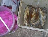 تحرير 139 محضر تموينى وإعدام مواد غذائية وأسماك مملحة فاسدة بسوهاج