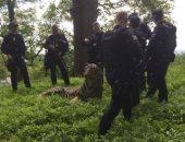 """تمثال نمر """"منحوت"""" يثير الرعب فى شرق إنجلترا.. صور"""