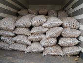 الزراعة تنهى فحص 713 ألف طن بطاطس تصدير .. و19600 طن تقاوى كسر محلى