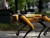 دوريات لكلب روبوت في إحدى حدائق سنغافورة لمراقبة التباعد الاجتماعى.. صور