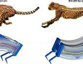باحثون يطورون أسرع روبوت فى العالم يحاكى حركات الفهد