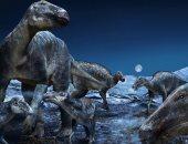 دراسة: الديناصورات لم تكن فى طريقها للانقراض قبل اصطدام الكويكب الكارثى