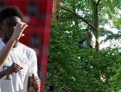 المدرجات فى عصر كورونا.. مشجعان يتسلقان شجرة لمشاهدة مباراة بايرن ميونخ
