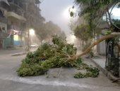 شاهد آثار عاصفة ترابية شديدة ضربت محافظة الأقصر فى 15 صورة