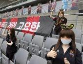 بدل الجماهير.. دمى جنسية خلال مباراة كرة قدم تثير ضجة في كوريا الجنوبية.. فيديو وصور