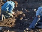 دراسة.. اللص العملاق..الديناصور المكتشف بالأرجنتين عمره 70 مليون سنة
