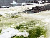 بسبب تغير المناخ.. ثلوج القطب الجنوبى ستصبح خضراء