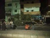 عواصف ترابية تسبب سقوط أشجار وقطع الكهرباء عن عدة مناطق بالخارجة.. صور